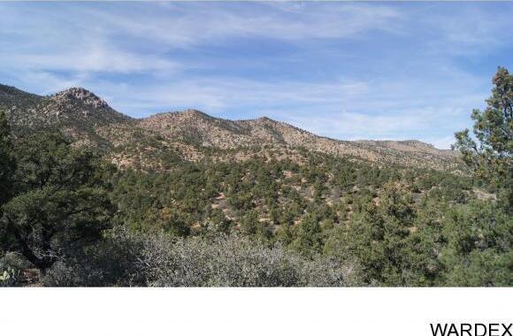 9999 N. Trap Springs Rd., Hackberry, AZ 86411 Photo 17
