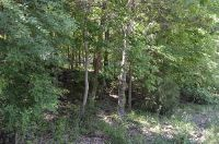 Home for sale: Tbd Wildflower Lots 31, & 32, Kimberling City, MO 65686