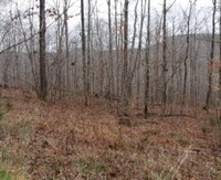 Home for sale: 10 .85 Ac. Cheyenne Dr., Jamestown, TN 38556