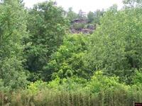 Home for sale: 315 Riverside Dr., Norfork, AR 72658