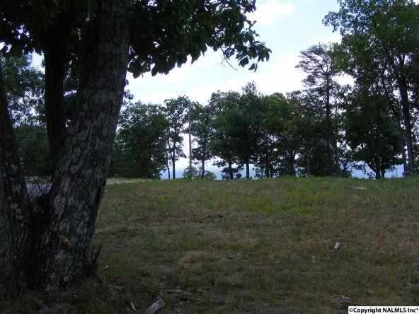 23350 N. County Rd. 89, Mentone, AL 35984 Photo 6