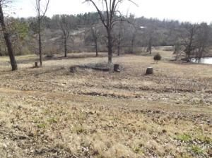 118 Old Hwy. #9, Mammoth Spring, AR 72554 Photo 2