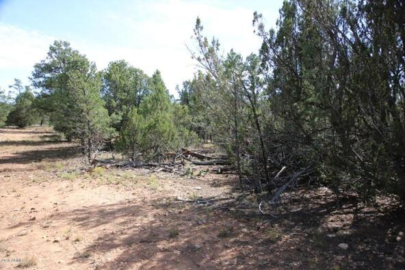 3311 Homestead Rd., Overgaard, AZ 85933 Photo 23