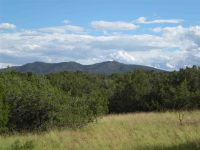 Home for sale: Grenfell Ranch Rd. 80 Acres, Santa Fe, NM 87010