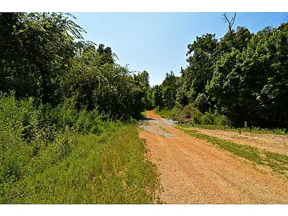 5 Ac Jesse/Esculapia Ln., Rogers, AR 72758 Photo 9
