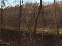 Home for sale: Lot 11 Bridge Waters Dr., Neillsville, WI 54456