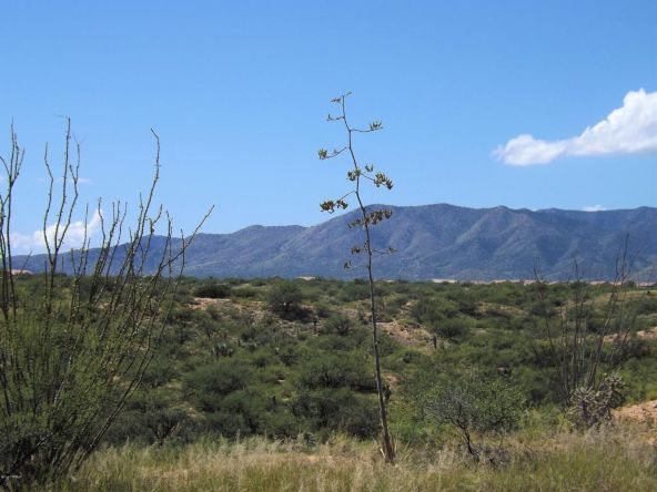 1150 S. Canyon Overlook, Benson, AZ 85602 Photo 5