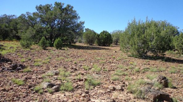 514 Westwood Ranch Lot 514, Seligman, AZ 86337 Photo 12