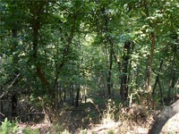 Home for sale: Walnut, Eureka Springs, AR 72632