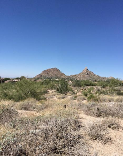 25180 N. 107th Way, Scottsdale, AZ 85255 Photo 37