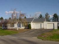 Home for sale: 3291 Birch Run, Adrian, MI 49221