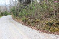 Home for sale: Lot 11 Livingston Hwy. 111, Monroe, TN 38573