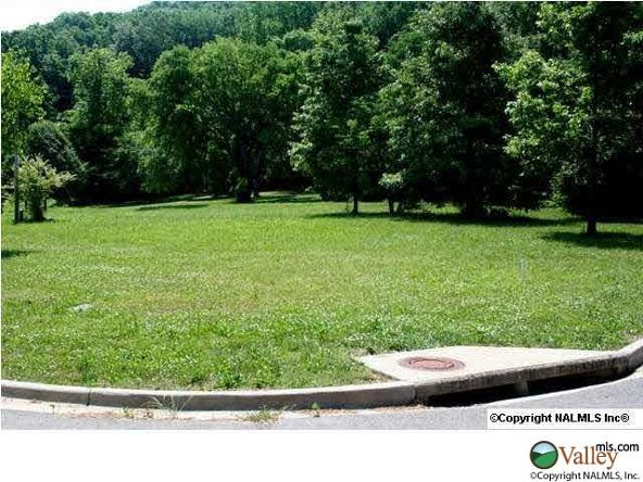 115 Lake Creek Dr., Guntersville, AL 35976 Photo 11