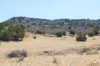 Home for sale: Tbd Siloam Rd., Beulah, CO 81023