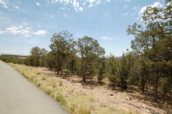 Lot 21 Spencer Rd., Alto, NM 88312 Photo 1