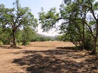 Home for sale: 5 Ac Rancho de Fruita, Coarsegold, CA 93614