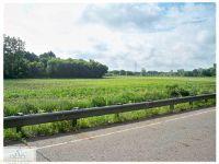 Home for sale: Nixon & Oak, Charlotte, MI 48813