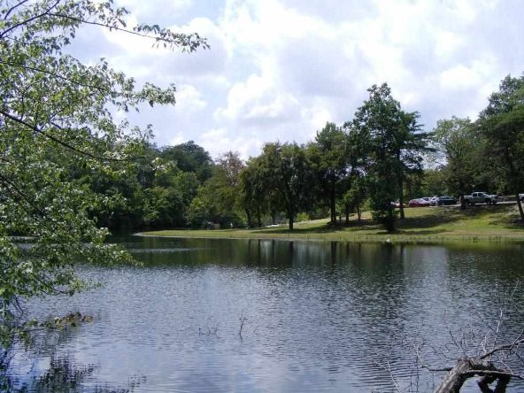 102 County Rd. 945, Mentone, AL 35984 Photo 5