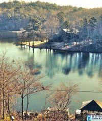 Home for sale: 166 Deerwood Lake Dr., Harpersville, AL 35078