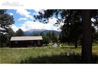 Home for sale: 107 Stephanie Pl., Divide, CO 80814