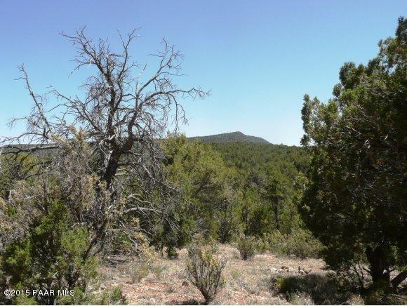 1024 Sierra Verde Ranch, Seligman, AZ 86337 Photo 4