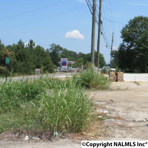 105 Sutton Bridge Rd., Rainbow City, AL 35906 Photo 3
