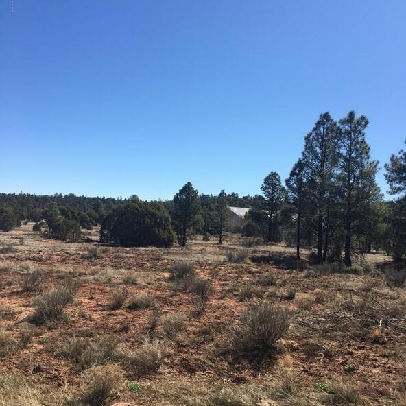 409-26-057 Iron Spur Trail, Show Low, AZ 85901 Photo 4