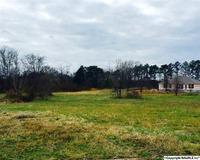 Home for sale: 223 Magnolia Glen Dr., Huntsville, AL 35811