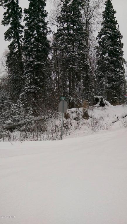 10274 S. Ridge Rd., Wasilla, AK 99654 Photo 3