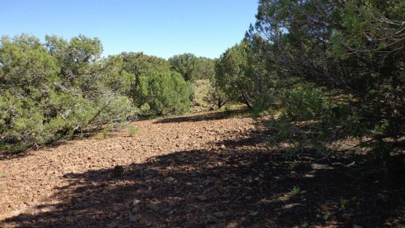 514 Westwood Ranch Lot 514, Seligman, AZ 86337 Photo 11