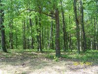 Home for sale: 000 Eastlake Ln., Muscle Shoals, AL 35661