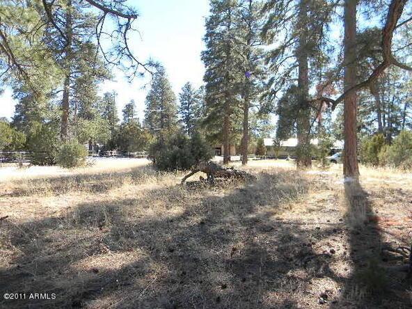 2000 Sunset Trail, Overgaard, AZ 85933 Photo 5