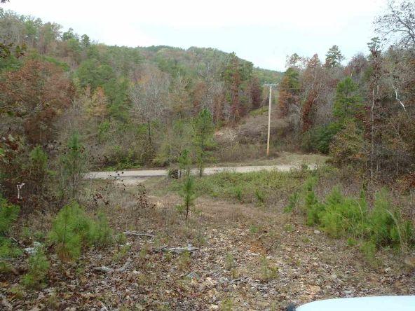 108 Buckthorn, Mountain Pine, AR 71956 Photo 15