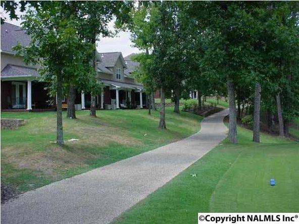 50 Chittom Wood Dr., Guntersville, AL 35976 Photo 2