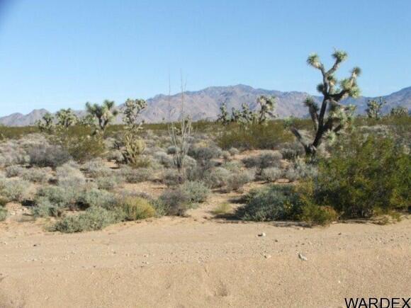 3529-B Arroyo Rd., Yucca, AZ 86438 Photo 5