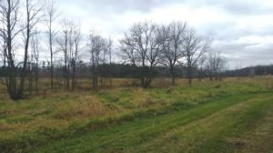 27.55 Acre State Hwy. 32, Sheboygan Falls, WI 53085 Photo 16