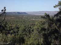 Home for sale: 481 Sierra Verde Ranch, Lot E., Seligman, AZ 86337