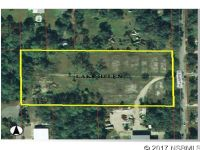 Home for sale: 230 Summit Ave., Lake Helen, FL 32744