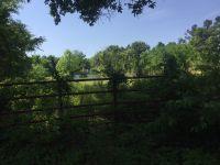Home for sale: 000 Ridge Rd., Gilbertsville, KY 42044