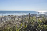 Home for sale: 500 South Atlantic Ave., Virginia Beach, VA 23451