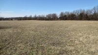 Home for sale: State Hwy. Aa & Farm Rd. 183, Springfield, MO 65803