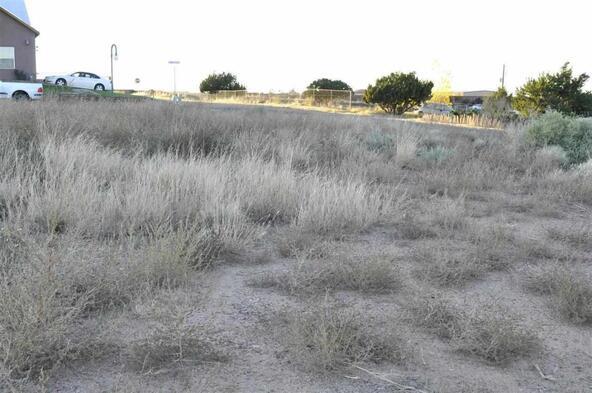 999 Roy Palmer Dr., Taylor, AZ 85939 Photo 10