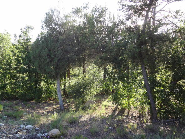 1760 S. Canyon Ridge Trail, Show Low, AZ 85901 Photo 8