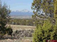 Home for sale: 13300 Rd. 30.5 Loop, Mancos, CO 81328