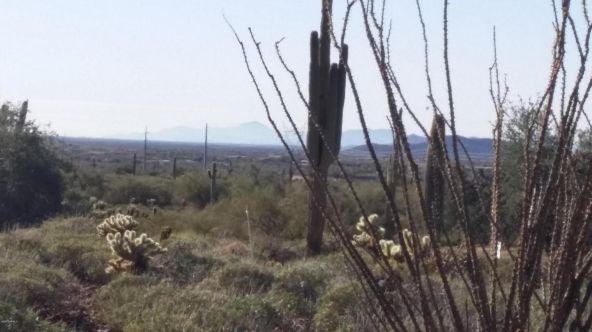 40024 N. 12th St., Phoenix, AZ 85086 Photo 3