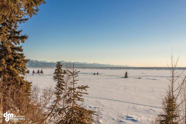 10880 Kamishak Bay Cir., Anchorage, AK 99515 Photo 21