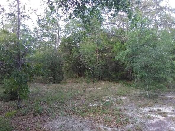 0000 Terzino Ln., Chipley, FL 32428 Photo 8