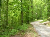 Home for sale: Tall Pine Cir., Tellico Plains, TN 37385