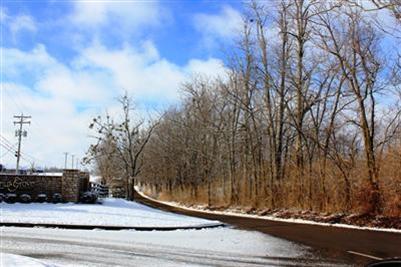 3925 Real Quiet Ln., Lexington, KY 40509 Photo 4