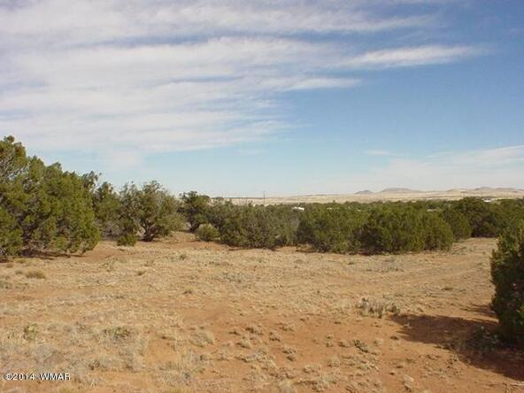 1b N. 8690, Concho, AZ 85924 Photo 24